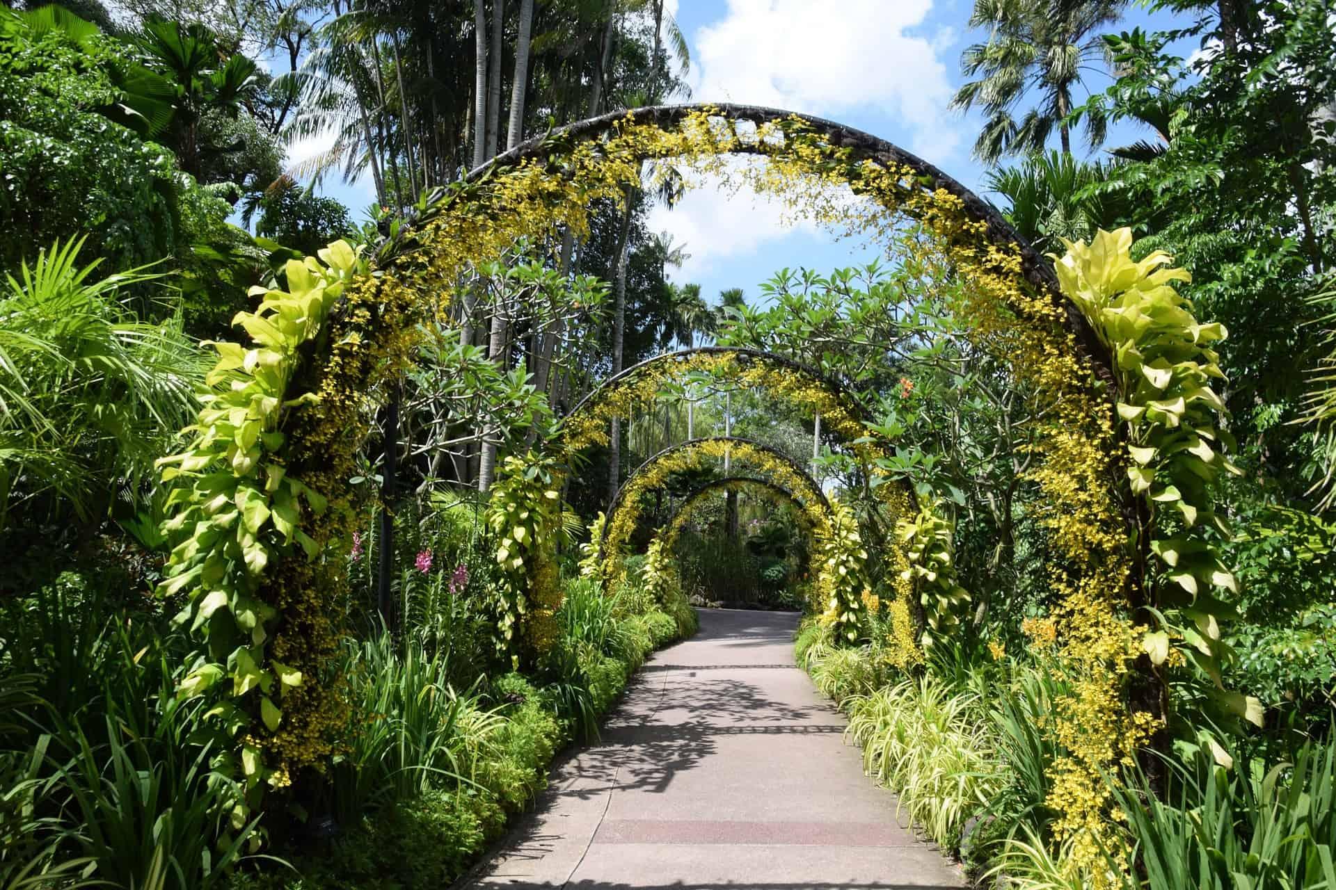 Singapore Botanical Garden Archway