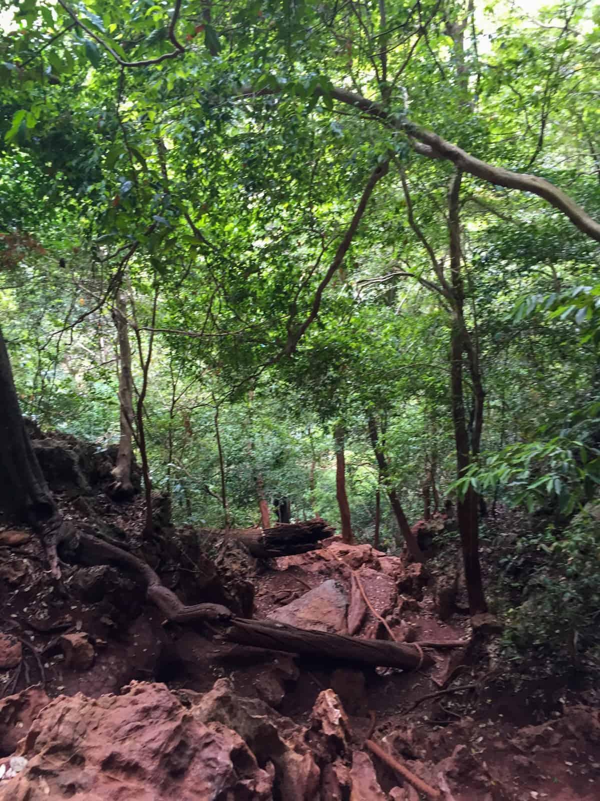 Hiking to Hidden Lagoon on Railay Peninsula